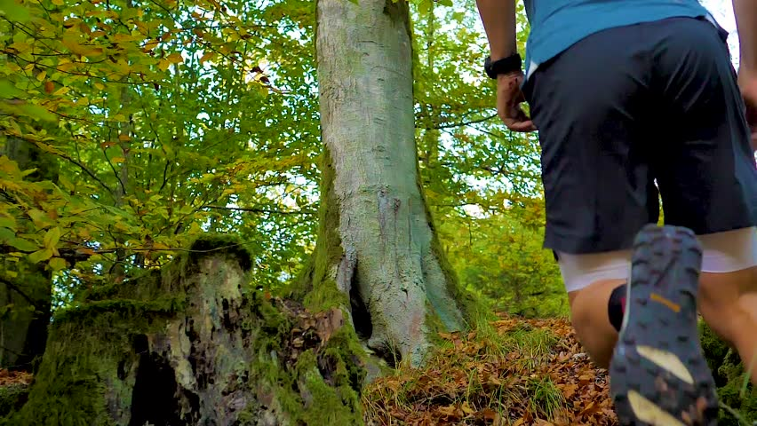 Close-up of Man running uphill in the forest | Shutterstock HD Video #1006570813
