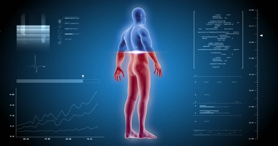 Man full body scan skelet inside, anatomy in x-ray UI | Shutterstock HD Video #1006690813