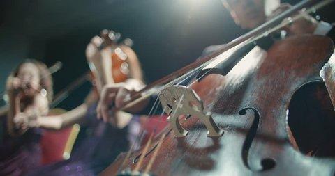 string quartet performs on stage, detail shot