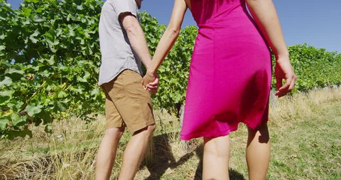 Romantic couple holding hands in vineyard walking by grapevines on wine tour in wine region visiting winery. People on holiday enjoying wine tasting experience in summer valley landscape. SLOW MOTION.