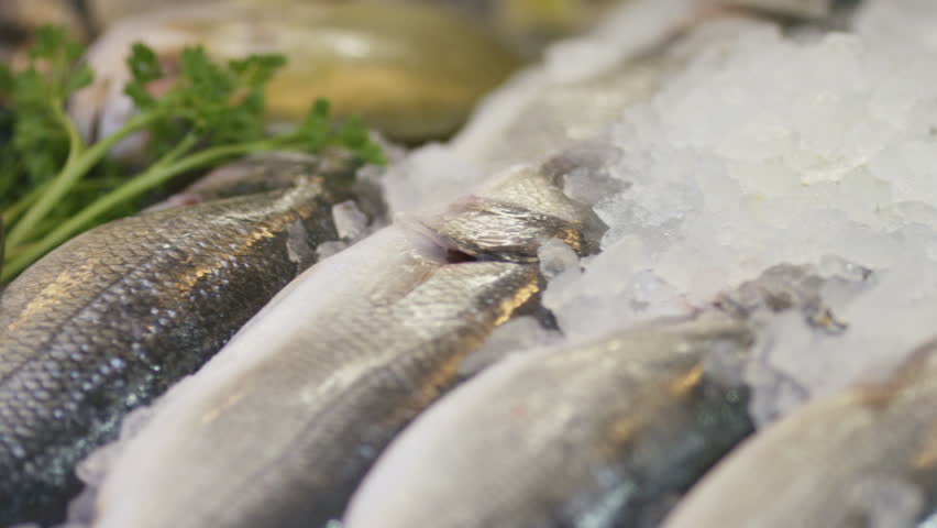 Camera pans across fish resting on ice in a fishmongers shop