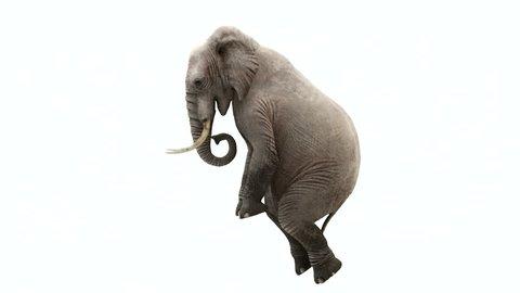 CG rendering of the flying elephant.Loop animation.