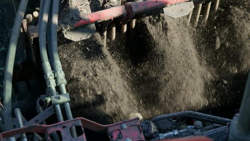 The modern combine harvester harvesting the crop of sugar beet. 4K