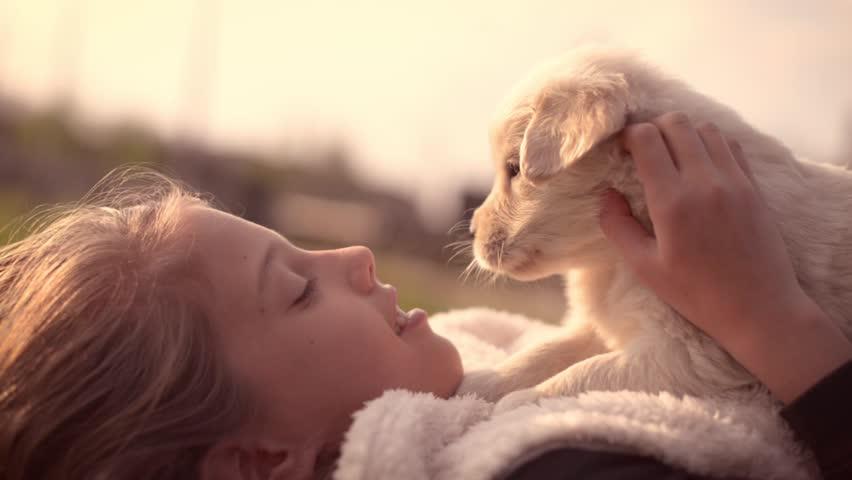 Girl Kid Kissing Hugging Petting Golden Retriever Labrador Puppy Outdoors Close Up Emotional | Shutterstock HD Video #1007631853