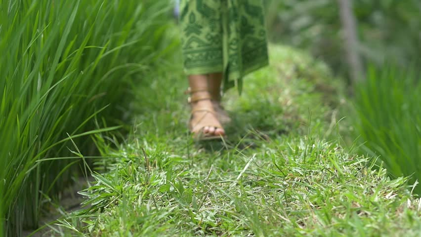 Ground level Caucasian female feet walking toward camera on grass | Shutterstock HD Video #1007636854