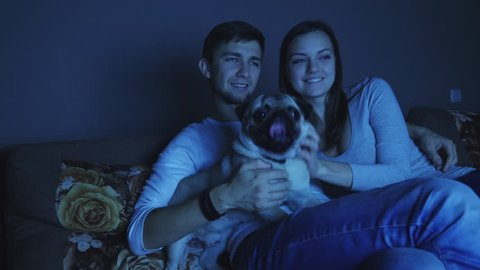 Couple watching television program with flashing images in dark room with dog, late night movie or other tv show. A man stroking a dog, having fun