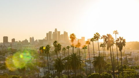 Beautiful Downtown Los Angeles and Palm Trees Day to Night Sunset Timelapse