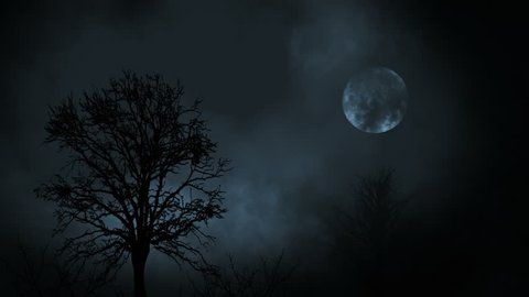 Full moon at night rising between tree forest with clouds
