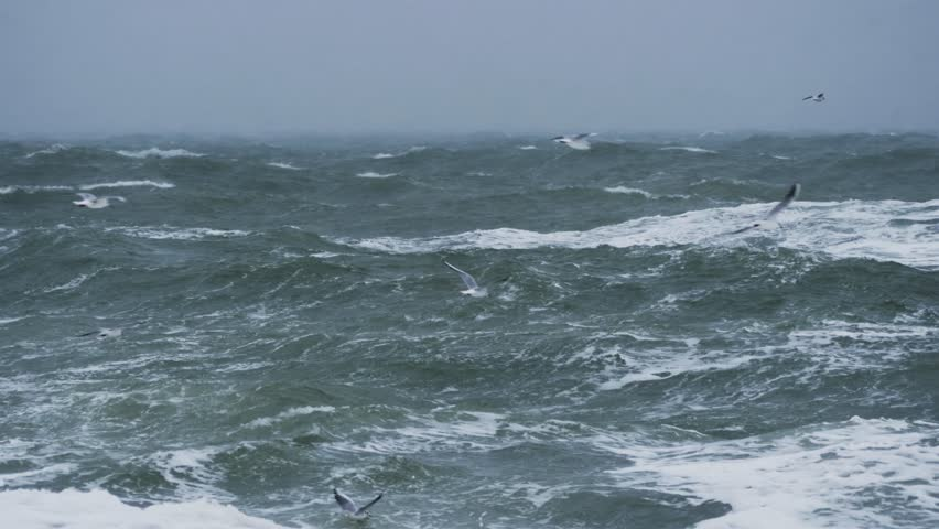 Long shot of rough sea with snow storm | Shutterstock HD Video #1007791033