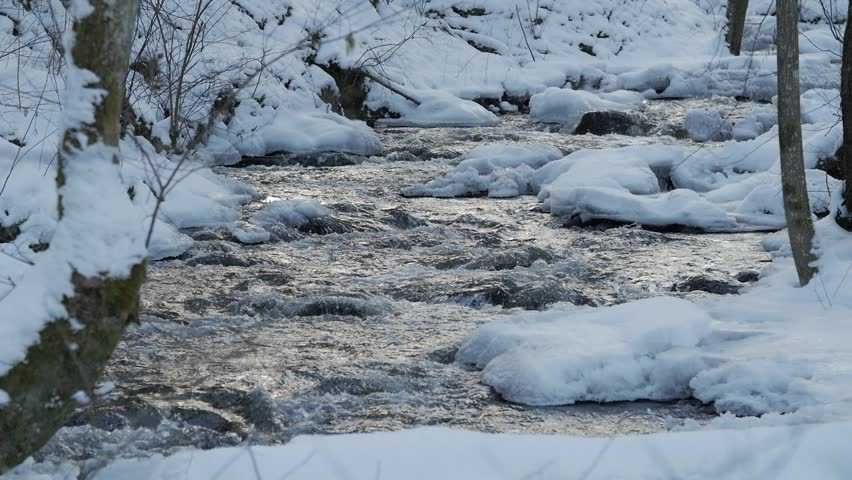 A beautiful crystal clear stream in winter with snow flows through woods, Lithuania. | Shutterstock HD Video #1008048613