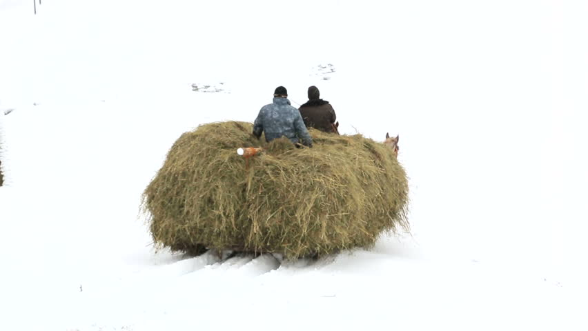 Harvesting the hay for the winter. Winter in Carpathians