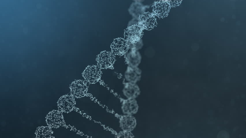 Seamless looping 3d animation of a rotating digital plexus DNA chain that is assembled from and then again scattered into plexus fragments. Abstract medical science research background. Blue version.