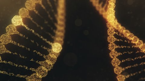 Seamless looping 3d animation of two rotating digital plexus DNA chains with glowing impulses running through the chains. Abstract medical science research background. Orange version.