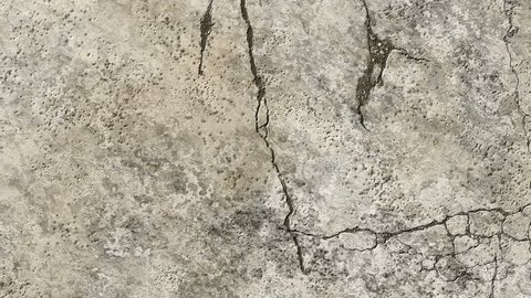 cracked process on an old wall