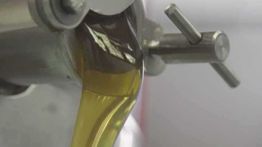 Honey Production 4K | Shutterstock HD Video #1008510163