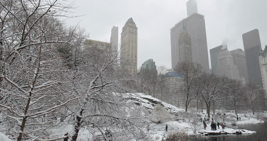 New York City Central Park in snow | Shutterstock HD Video #1008879683
