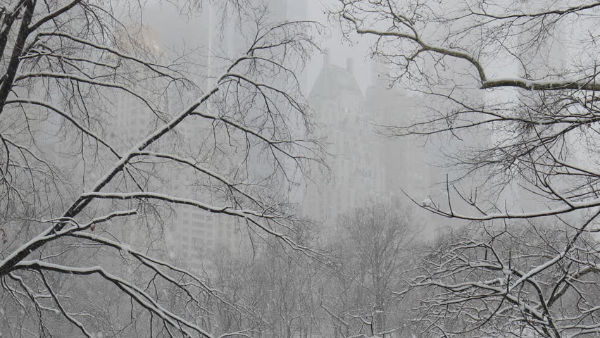 New York City Central Park in snow | Shutterstock HD Video #1008879713