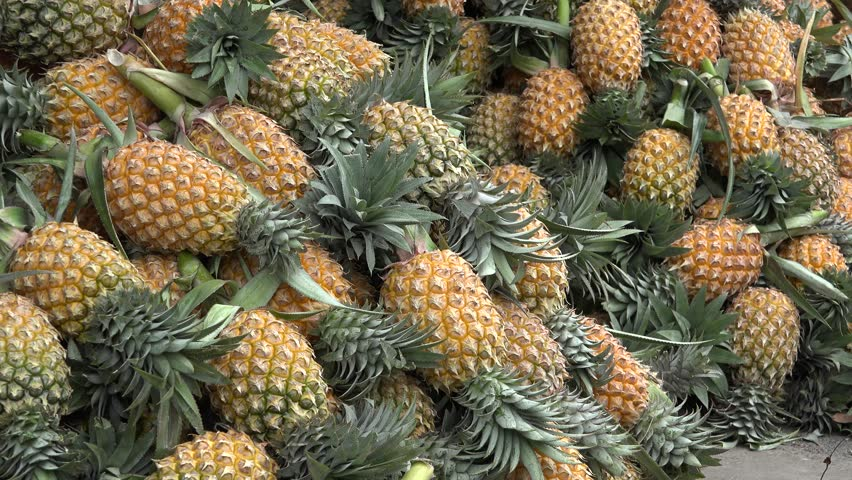 Hands selecting pineapples from big pile in Bangkok street marketplace