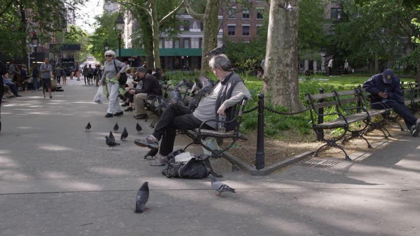 Public Park Benches Part - 34: NEW YORK - MAY 17, 2015: Bird Man On Washington Square Park Bench;