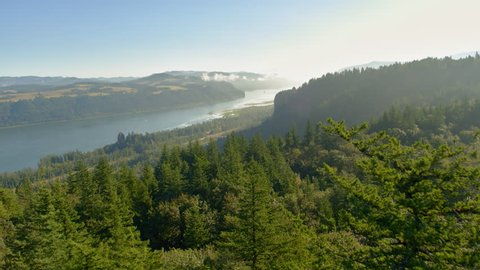 Moving through tall grasses and between pine trees we see the Columbia River Gorge and Vista House in the distance