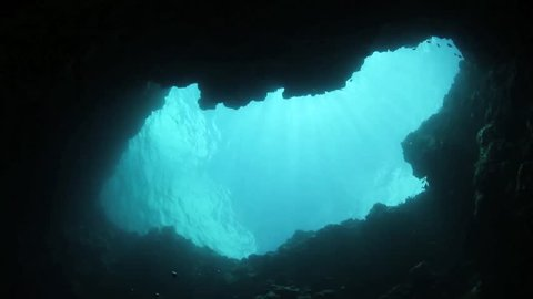 """The coral reefs of Palau are home to several submerged sink holes. These """"blue holes"""" provide habitat for many fish and invertebrates and are beautiful scuba diving sites."""