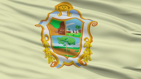 Manaus closeup flag, city of Brasil, realistic animation seamless loop - 10 seconds long