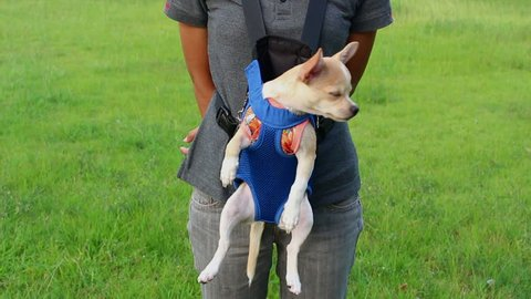 Shoulder Bag puppy dog
