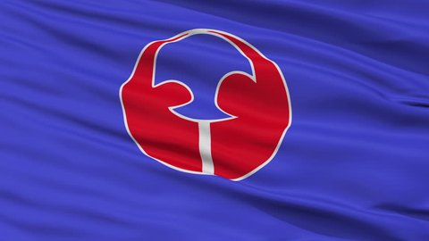 Toyoake close up flag, Aichi prefecture, realistic animation seamless loop - 10 seconds long