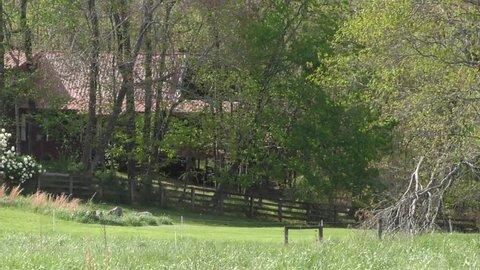Four videos of a bright green field in Lumpkin County outside of Dahlonega, GA and two views of Wauka Mountain in Hall County.