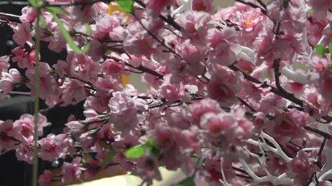 Spring flower cherry sakura tree branch blossom background. Sun back light pink white cherry tree branch sakura flower blossom background. Cherry sakura tree flower blossom spring. Artificial Sakura