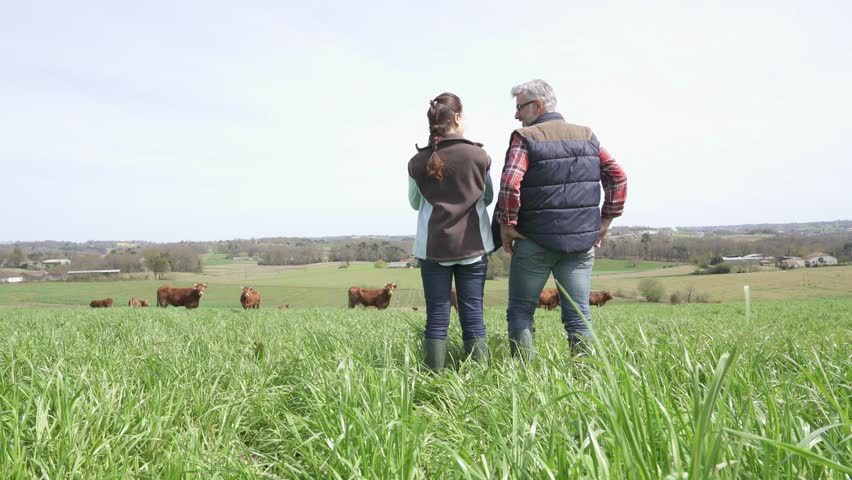 Farmers walking in field | Shutterstock HD Video #1010236313