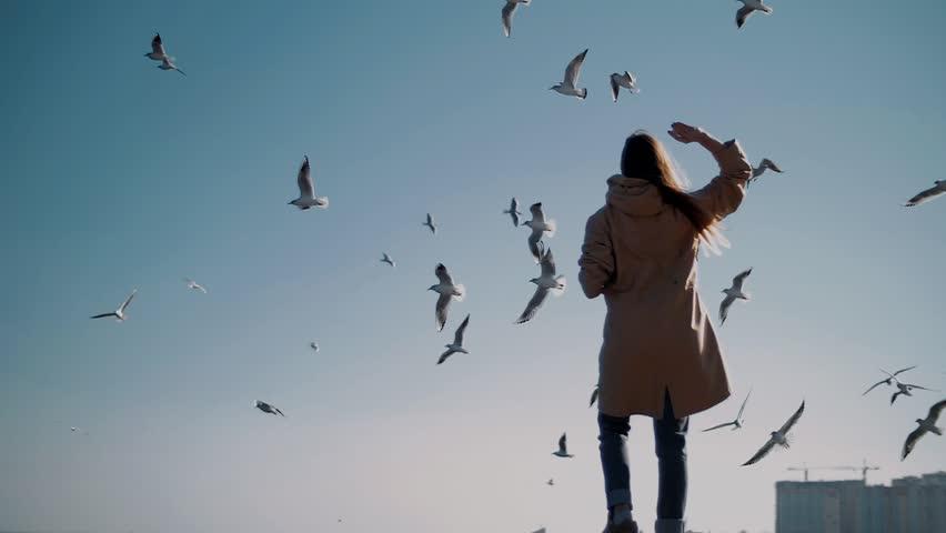 Girl on the beach feeding a flock of seagulls