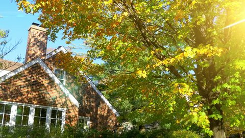 Fall Cabin House in Mountains, Log Cottage in Mountain Forest Nature Park Sun