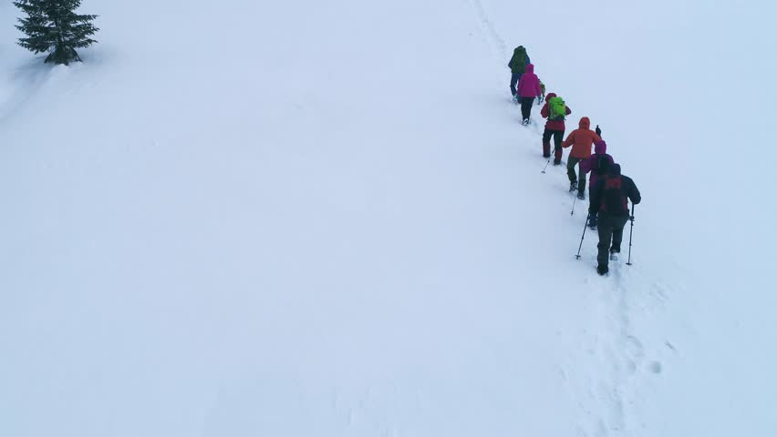 Group of tourists with backpackers and ski poles climbing the Carpathian mountains in winter. Climbers hike in the mountains | Shutterstock HD Video #1011325343