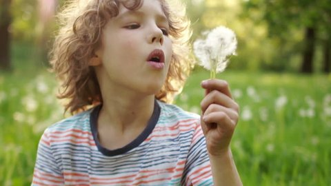 A teenage boy is resting in a clearing in the summer. He is blowing on a dandelion. Flower seeds are carried by the wind. Slow Motion, dynamic video