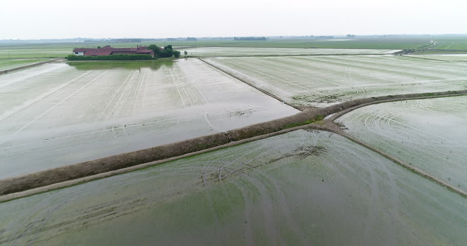Flying over paddy fields, flooded fields for rice cultivation in the Po Valley, Italy. Aerial view.