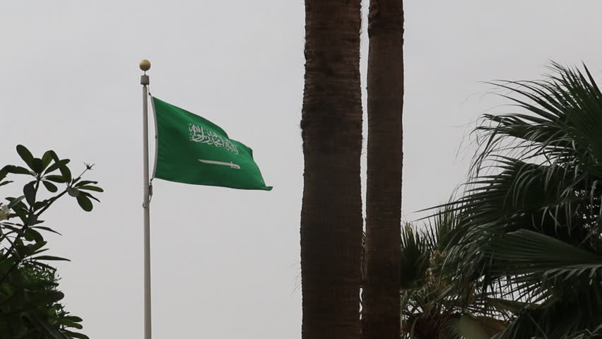 Saudi Flag framed by Trees Outdoor with little camera movement and flag waving with wind
