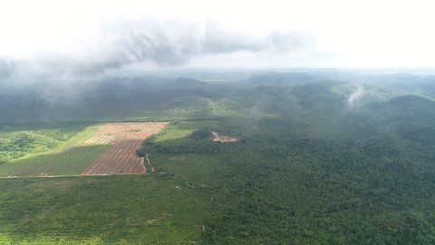 Farm land next to jungle national park