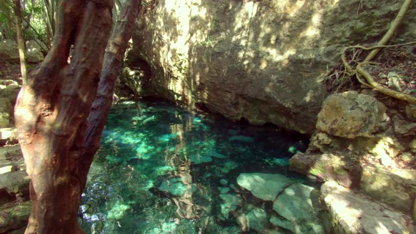 Cenotes in Tulum Tracking Shot
