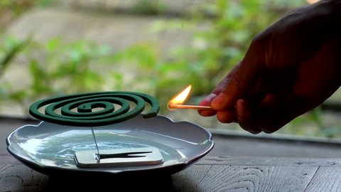 TOKYO,  JAPAN : Burning green MOSQUITO COIL in Japanese house in summer season.