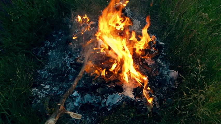 Free Fire Imagens Em Hd