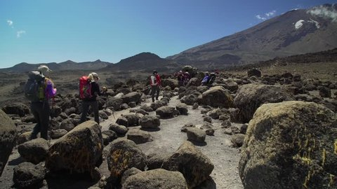 Porters climbing Mount Kilimanjaro. Group Of tourist hiking on Machame route, Kilimanjaro Mountain. Tourists walk along the path. Mountain trail during the ascent to the summit of Kilimanjaro