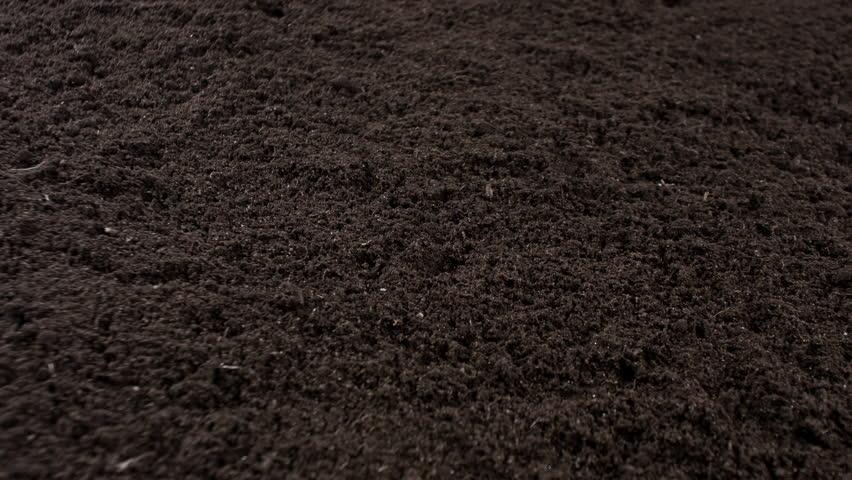 Garden Soil Background 4k Stock Footage Video 100