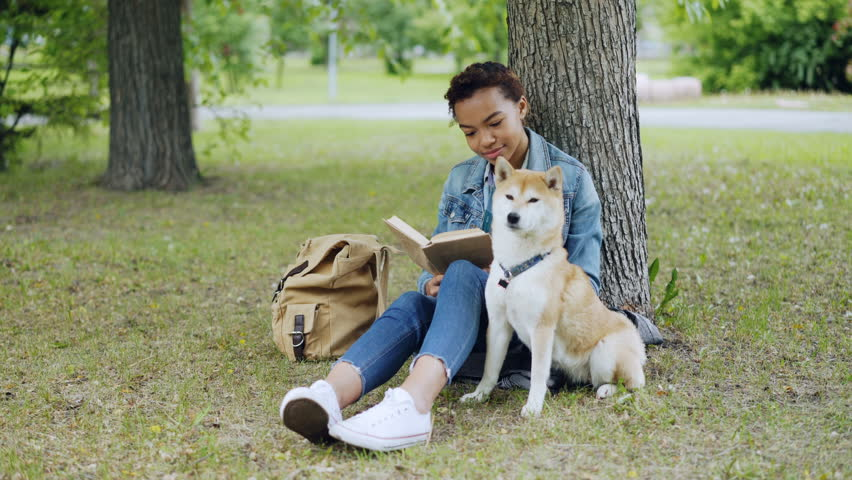 Cheerful mixed race girl dog owner is reading book and stroking her cute puppy sitting on grass in park on summer day. Backpack, green lawn and trees are visible. #1012911923