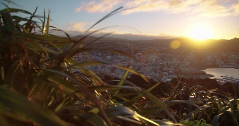 Sunset lens flare over Wellington Harbour New Zealand