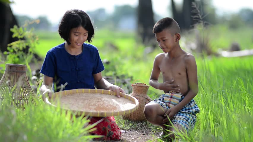 lifestyle of Southeast Asian people,Sister and brother farmer doing a rice threshing with old style of Thailand in the rice field countryside of Thailand. Agriculture and sufficient life concept.