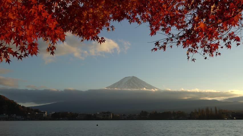 Mt. Fuji or Mount Fujiyama or Fujisan mountain view from Kawaguchi lake in autumn foliage with sway red Japanese maple leaves as foreground, Kawaguchiko, Yamanashi, Japan. | Shutterstock HD Video #1013153813