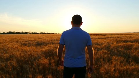 A young prospective farmer walks the wheat field against the backdrop of a sunset at a slow pace. The concept of harvesting