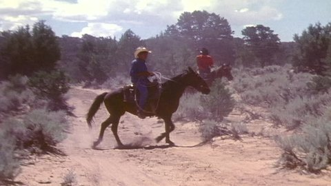 CIRCA 1970s - Navajo cowboys wrangle cattle; a young boy tries to lasso.