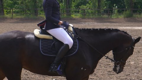 A young girl rider rides a horse riding in the saddle. the horse runs in a haphazard roundabout. Preparing for Dressage